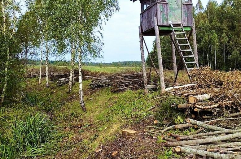 Lauksaimniecības platību attīrīšana no kokaugiem